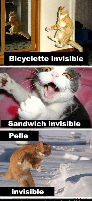 HUMOUR - blagues - Page 4 72a1e310