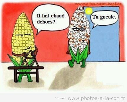 HUMOUR - blagues - Page 19 83582f10