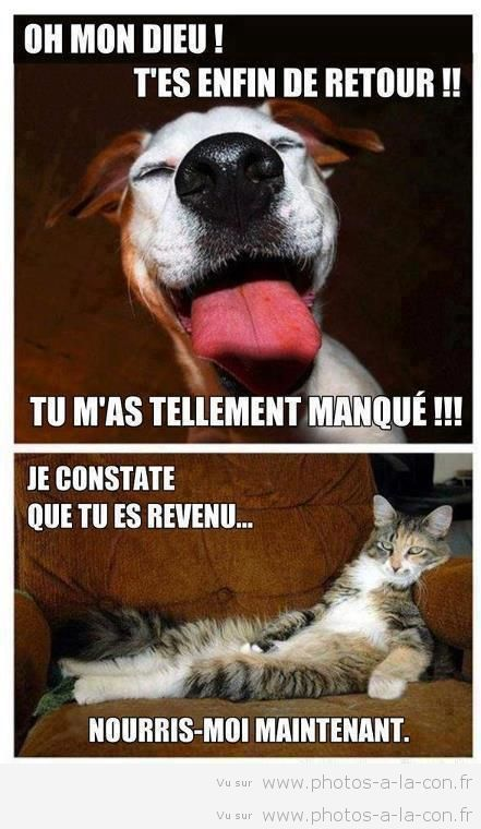 HUMOUR - blagues - Page 2 9adff410