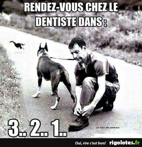 HUMOUR - blagues - Page 2 B8947810