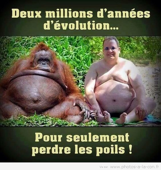 HUMOUR - blagues - Page 2 D60aef10