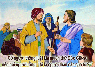 Chúa Nhật 15 Thường Niên Năm C - (10.07.2016) Suy Niệm Lời Chúa Cn-15-12