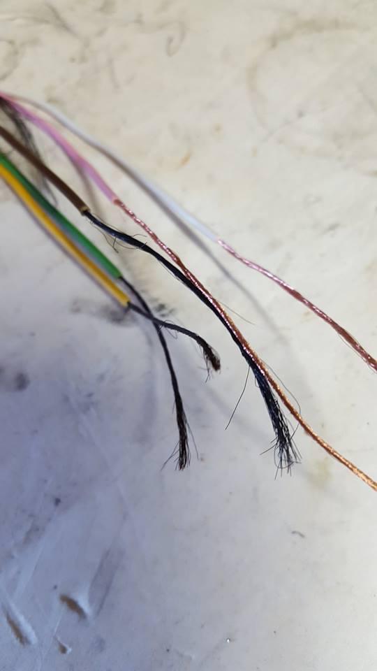 Divesoft Freedom...son câble est de la merde...Divesoft le sait et s'en bat les 'ouilles 13615410