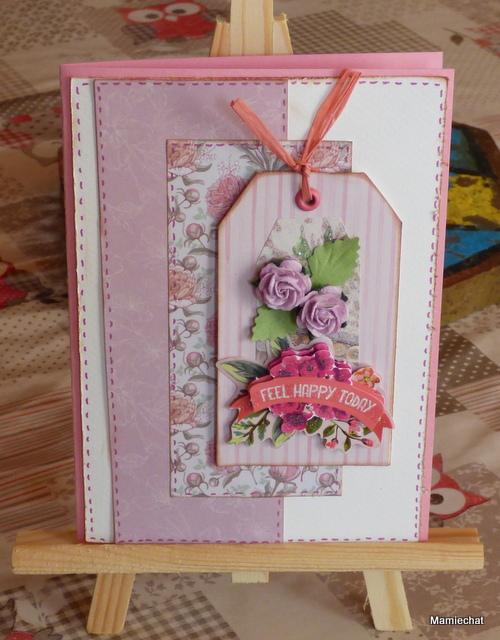 Le dada de Mamiechat : les cartes ! P1010933