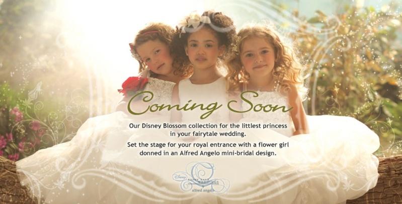 Disney Fairy Tale Weddings - Page 2 Sans_t10