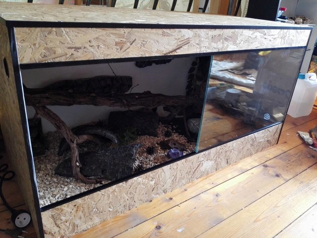 Installation pantherophis (WIP) 14089010