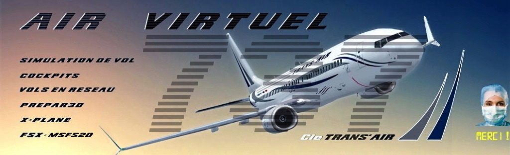 AIR VIRTUEL 737