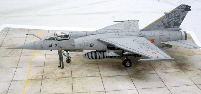 Mirage F1M (Spécial Hobby + Décal BERNA, 1/72) Img_7319