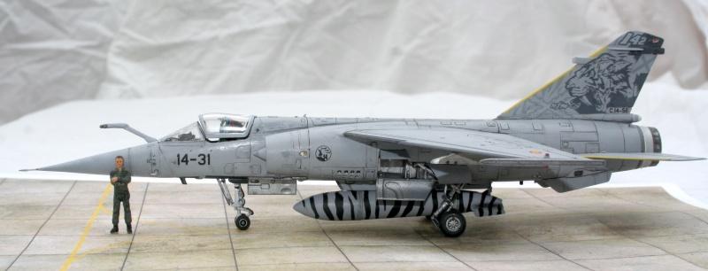 Mirage F1M (Spécial Hobby + Décal BERNA, 1/72) Img_7329
