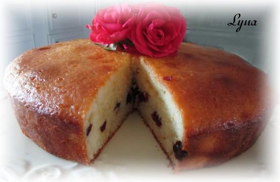 Gâteau au yogourt et canneberges, glaçage à l'orange Gyteau21