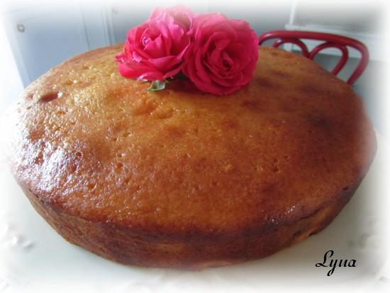 Gâteau au yogourt et canneberges, glaçage à l'orange Gyteau22
