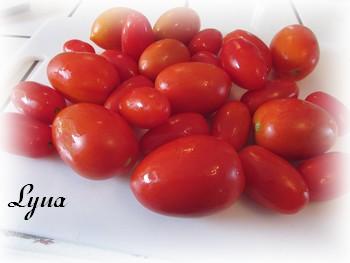 Salsa de tomatillos et tomates Salsa210