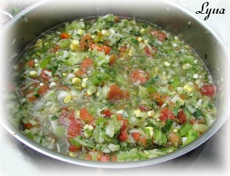 Salsa de tomatillos et tomates Salsa510