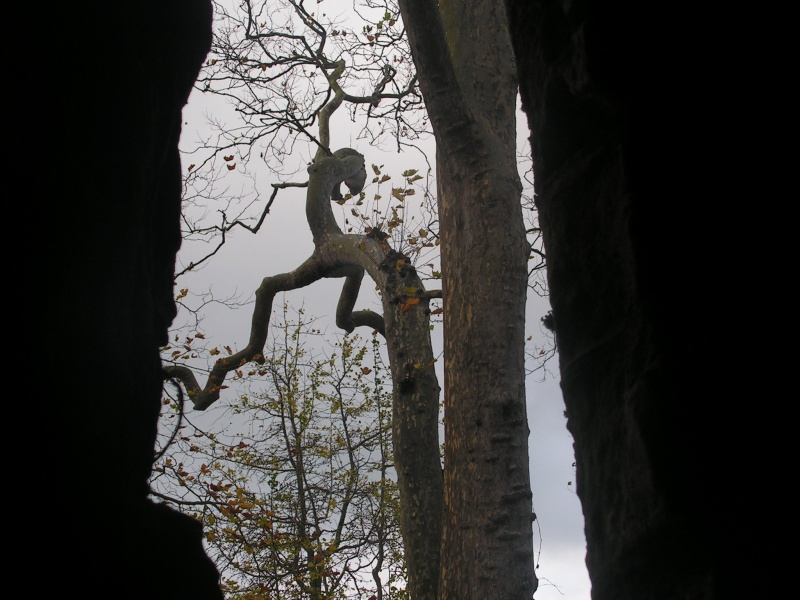 Bretagne Pict0022