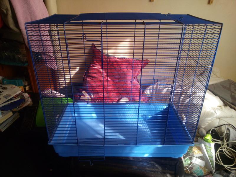 [A vendre] 2 cages - Paris Img_2023