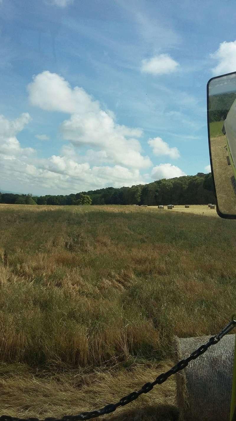 Concours photo du champ de céréales le plus sale - Page 2 02510