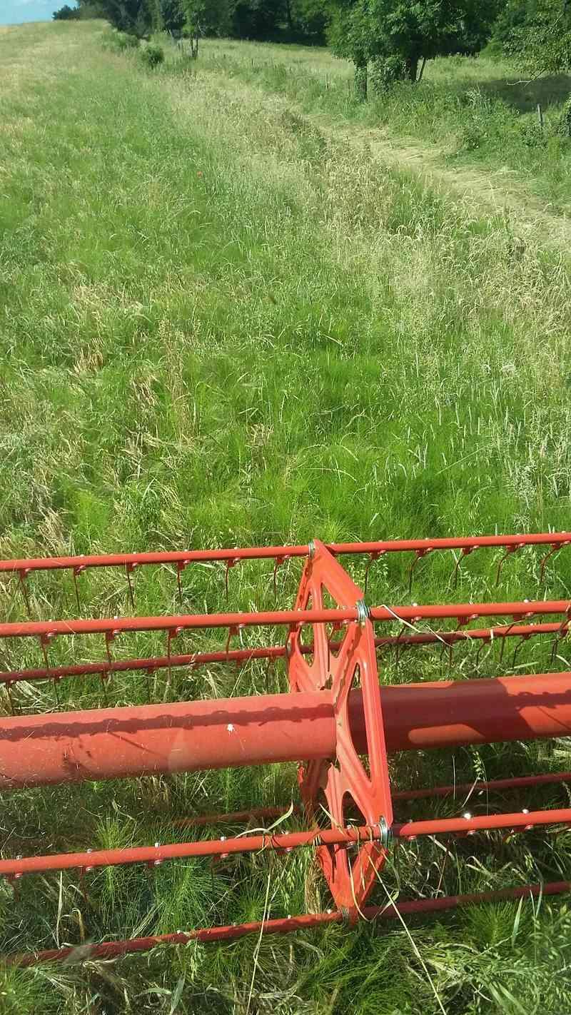 Concours photo du champ de céréales le plus sale - Page 2 03310