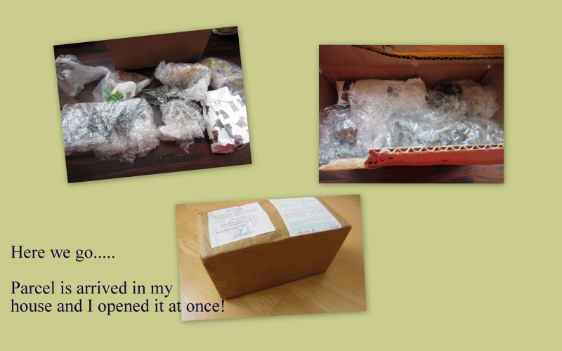 Part 1 - Great parcel arrived from Bulgaria - Thank you very much Kosta! 2016-038