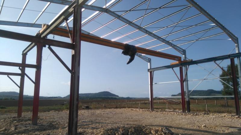 Présentation de l'élevage de Boris54  Installations fini  !  - Page 15 Dsc_0810
