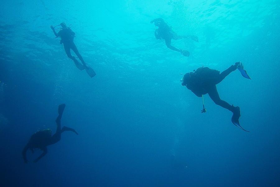 Réserve sous-marine du cap de Creus P1080010