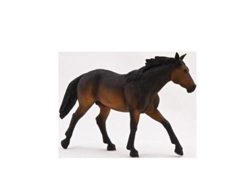 MOJÖ NEW 2013 HORSES ? Hore_210
