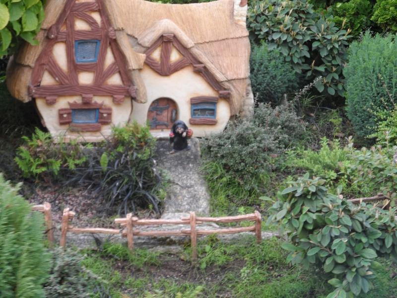 Voyage de Noce Disney du 24 au 27 septembre 2012 - Page 2 Disne295