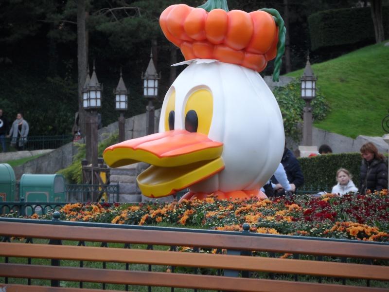 Voyage de Noce Disney du 24 au 27 septembre 2012 - Page 5 Disne500