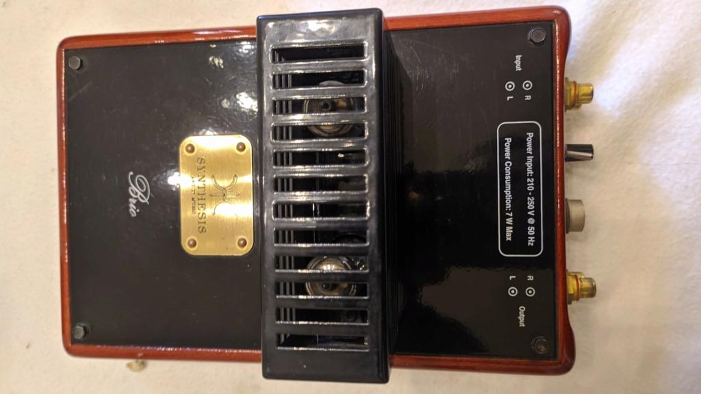 (CT Vendo) Preamplificatore phono a valvole - Synthesis Brio €. 350,00 spedito Img_2052