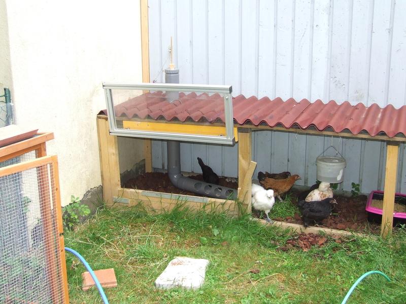Abreuvoirs pour poules Dscf5517