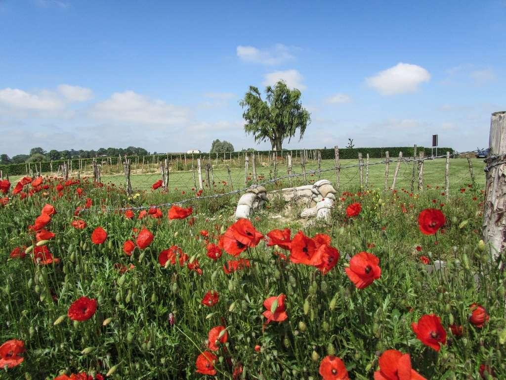 Inauguration par Michel Platini d'un monument en souvenir du match de la paix de Noël 1914 à Ploegsteert - Belgique Img_1312