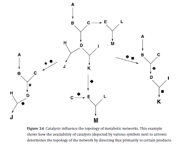 How Cellular Enzymatic and Metabolic networks  point to design Cataly10