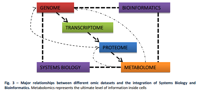 How Cellular Enzymatic and Metabolic networks  point to design System10