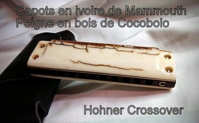 Photos harmonicas Brodur - Page 14 13882210