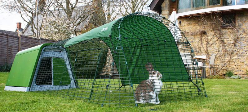 Omlet - Enclos pour poule lapin chat etc... Eglu_g10