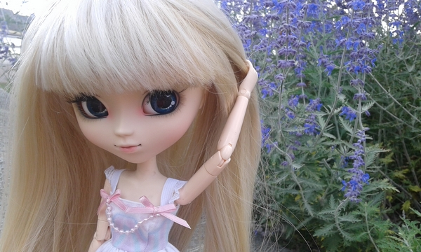 [Pullips] ❀ ℰniah's ℒittle ℊarden ❀ - Page 2 Ayane_20