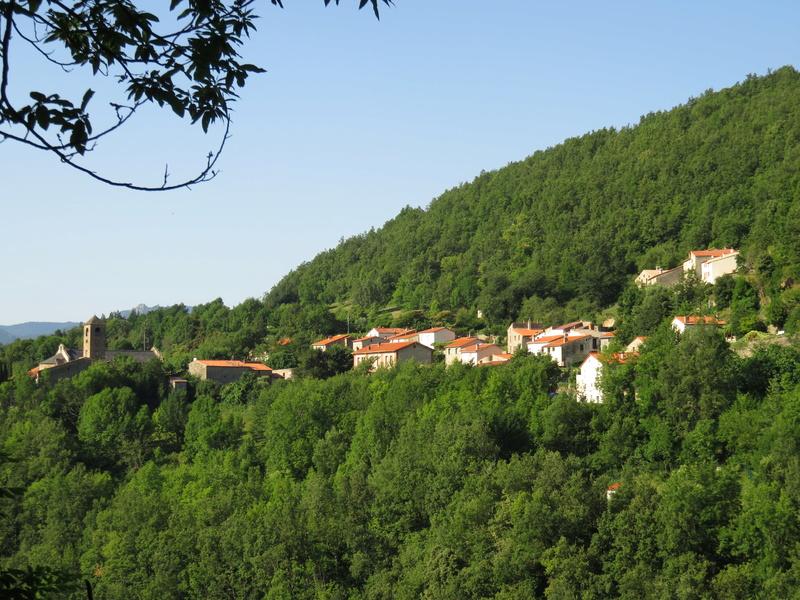 Les Ruines du Chateau de Montferrer Img_2213