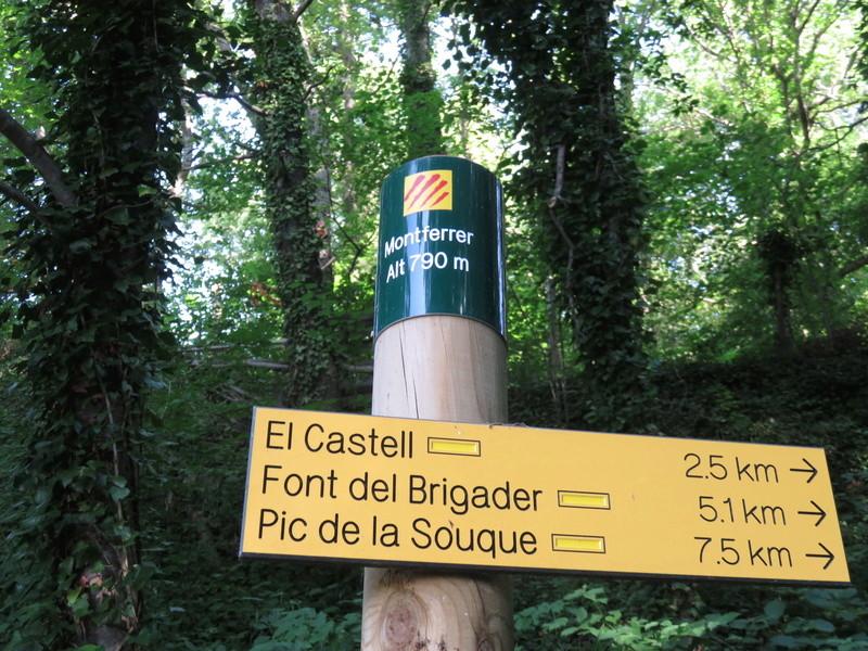 Les Ruines du Chateau de Montferrer Img_2214