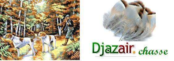 djazairchasse