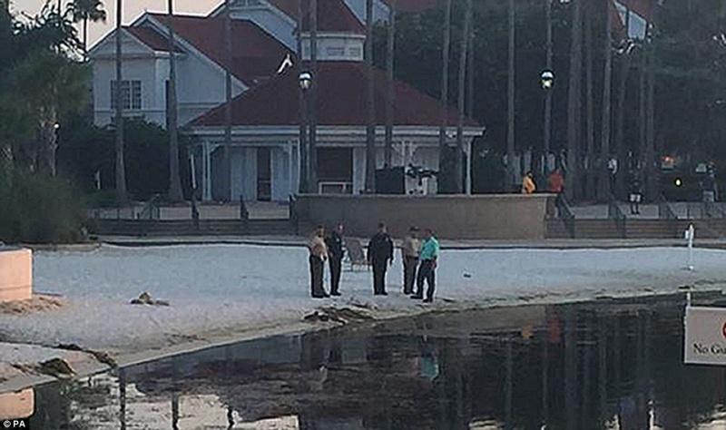 [Walt Disney World Resort] Un alligator tue un enfant au Grand Floridian - Page 3 354dff10