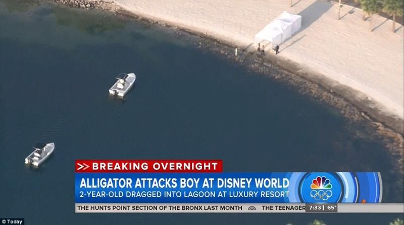[Walt Disney World Resort] Un alligator tue un enfant au Grand Floridian - Page 3 354e8910