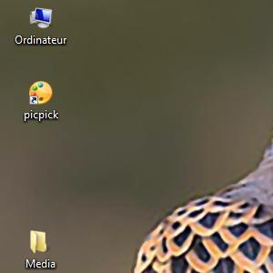Vos captures d'écran à l'aide du logiciel Picpick Image_10