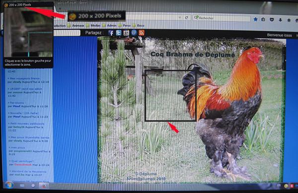 Vos captures d'écran à l'aide du logiciel Picpick Image_13
