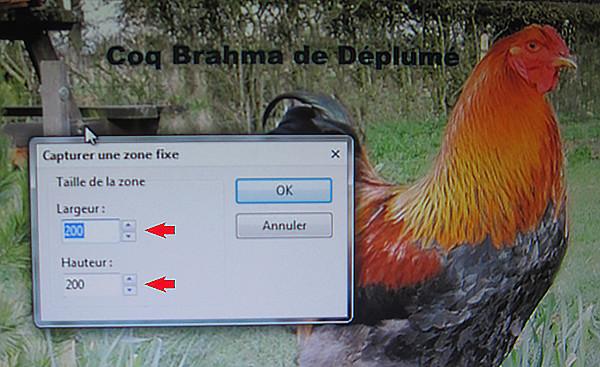 Vos captures d'écran à l'aide du logiciel Picpick Image_14