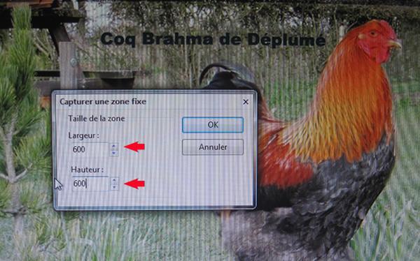 Vos captures d'écran à l'aide du logiciel Picpick Image_15