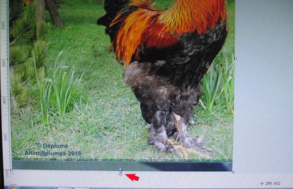 Vos captures d'écran à l'aide du logiciel Picpick Image_18