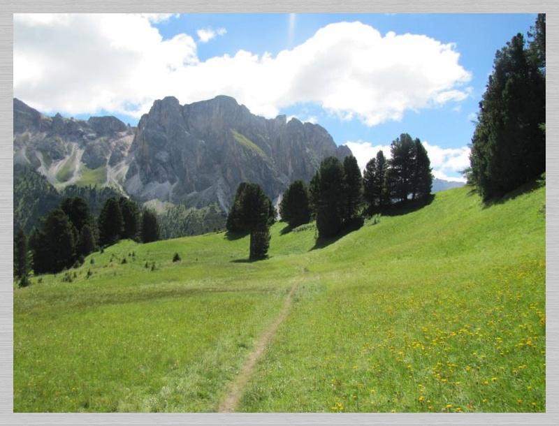 Dolomites (2 j)Col de Raiser Img_3620