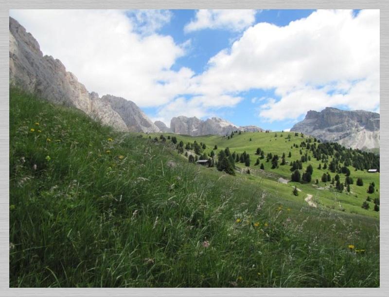 Dolomites (2 j)Col de Raiser Img_3710