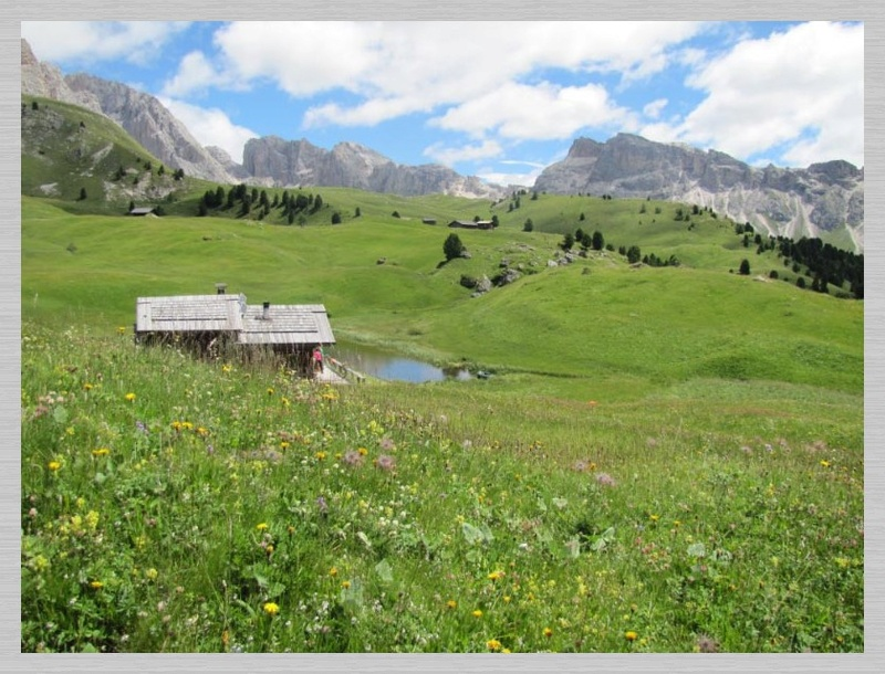 Dolomites (2 j)Col de Raiser Img_3714