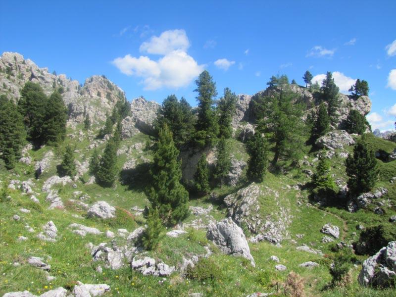 Dolomites (3j)Passo Sella Img_3819