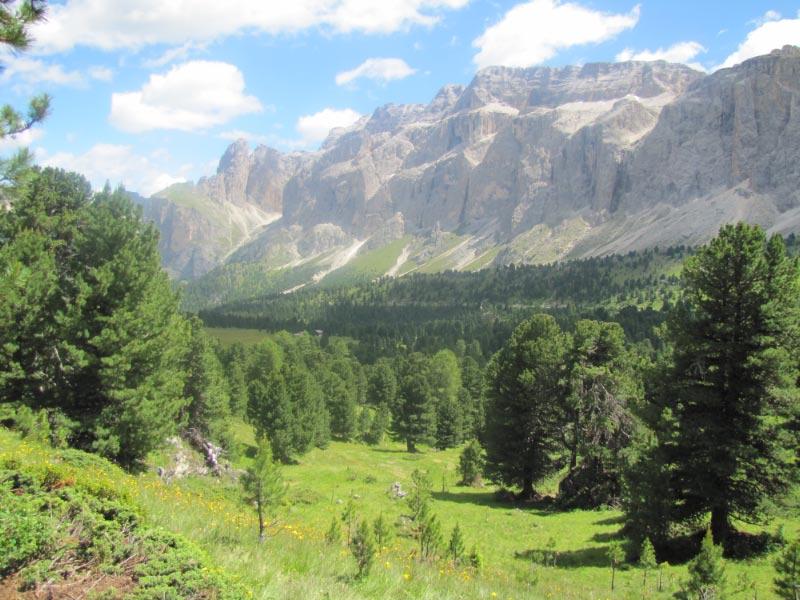 Dolomites (3j)Passo Sella Img_3917